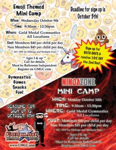 ALL Emoji_Ninja Zone Special Event Flyer